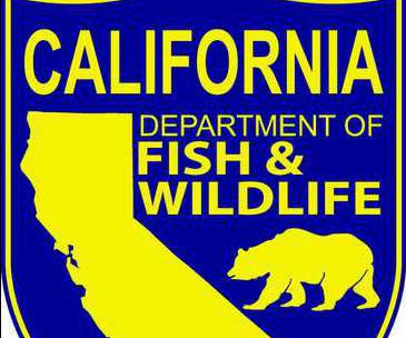 fish and wildlife logo