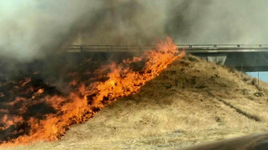 Fire Scorches Area Near Freeway In Turlock Turlock Journal