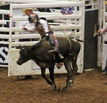 8-31 Oak Rodeo