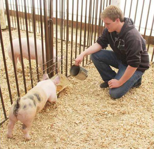 By Photo Congress || Turlock Unified School District Farm