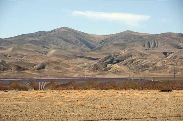 drought report pic