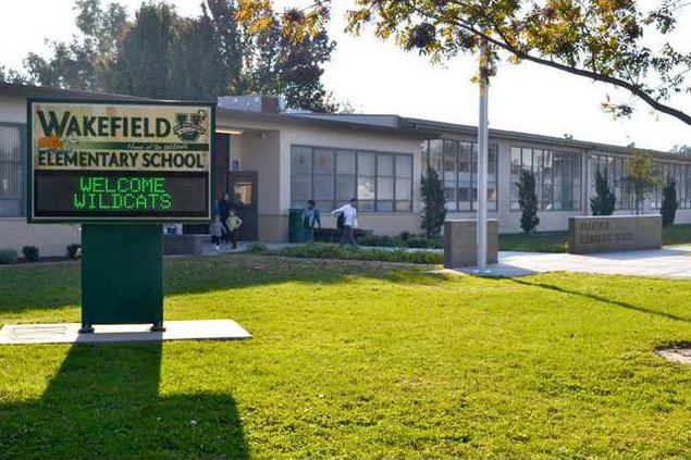 dual immersion wakefield