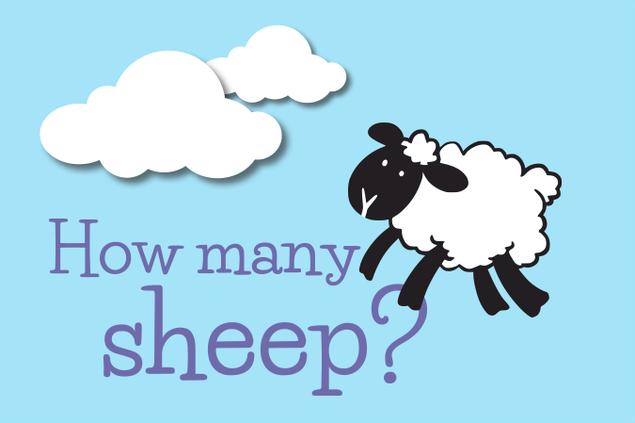 5596-sheep.png