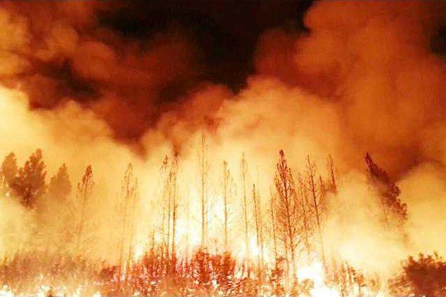 Rim-Fire