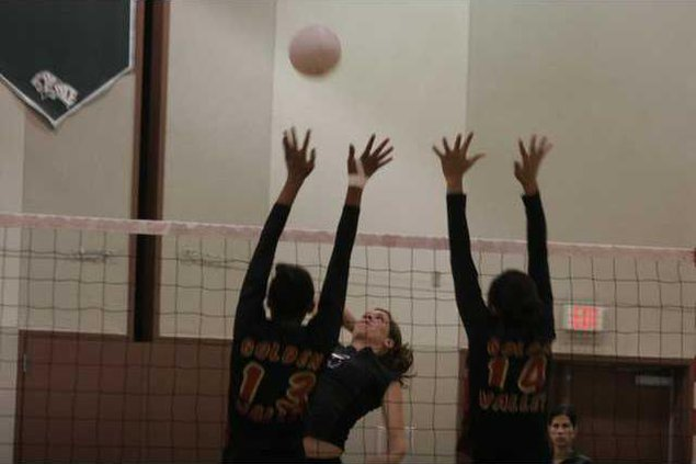 Pitman Volleyball Pic 1