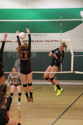 pitman vb pic 2