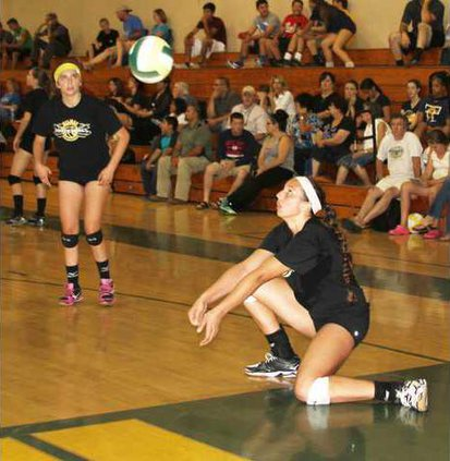 volleyball pic1