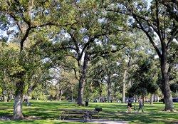 micke grove park