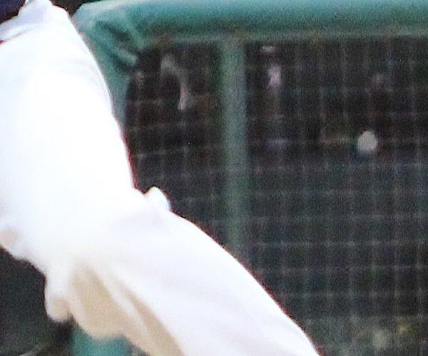 martin baseball