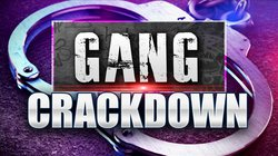Gang crackdown